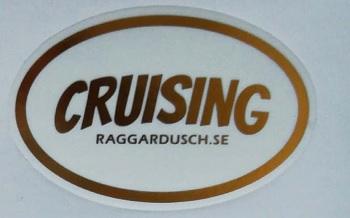 Cruising1